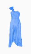 Coast Maxi Dress
