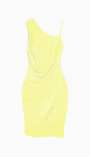 Max Azria Fitted Dress