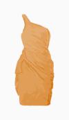 Amanda Wakeley One Shoulder Dress