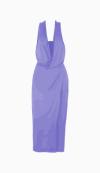 Diane Von Furstenberg Maxi Dress