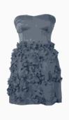 Coast Bubble Dress