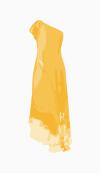 Roberto Cavalli Maxi Dress