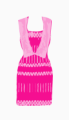 Anna Sui Fitted Dress