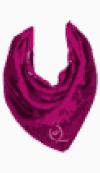 McQ Neck scarf