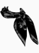 Versace Neck scarf