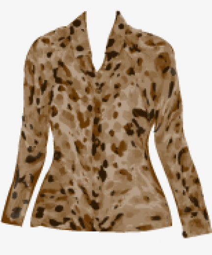 Brown Moschino Cheap And Chic Blouse
