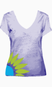 Joy of Clothes Fitted Top