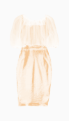 Lanvin Fitted Dress